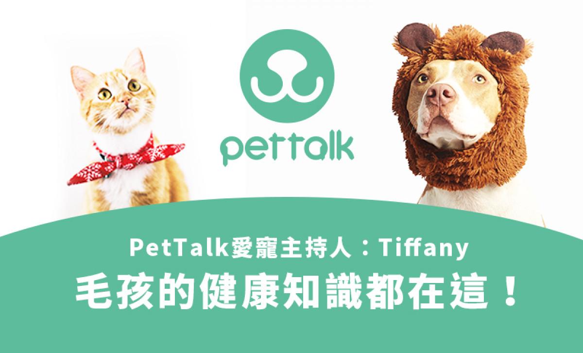 PetTalk說寵物,養毛孩高成本、高消費嗎?毛爸媽聽過來!毛孩的健康知識都在這!