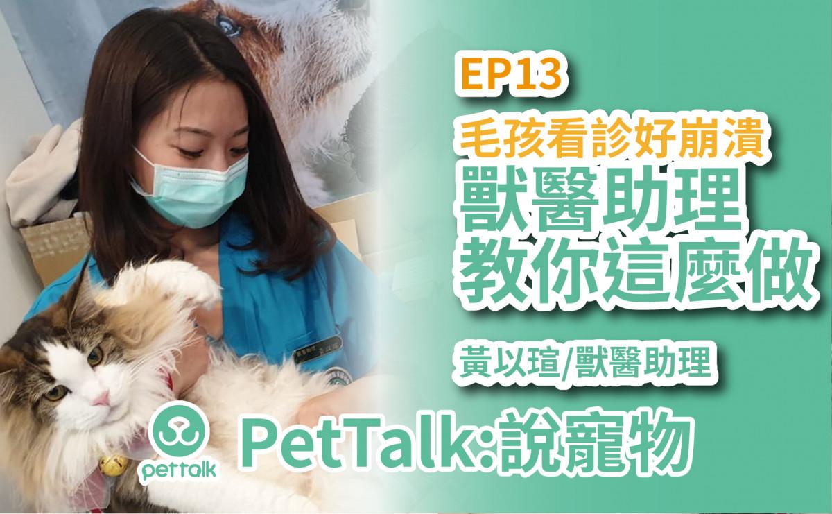PetTalk說寵物|毛孩看診超崩潰,快讓獸醫助理教爸媽怎麼辦? 【黃以瑄 獸醫助理】