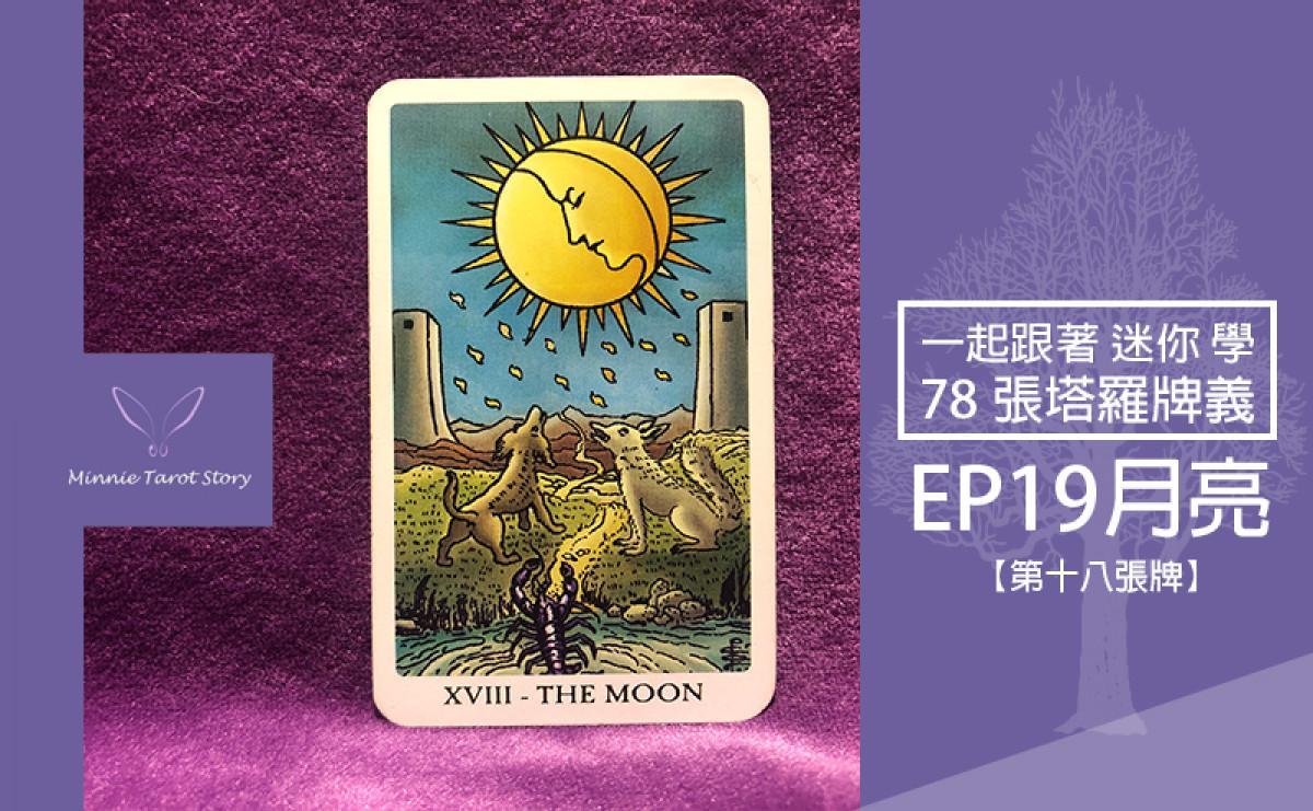 EP19塔羅78張塔羅牌義【月亮】不安多變,月光下的幻影反映內心的真實