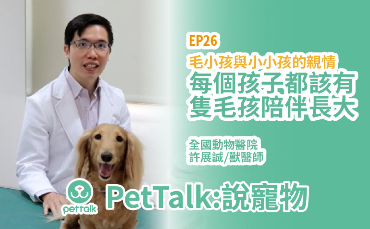 PetTalk說寵物|毛孩與小孩一同長大的好處是什麼?【許展誠 獸醫師】