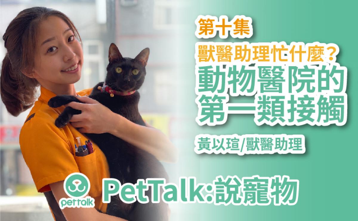PetTalk說寵物|動物醫院的第一類接觸,獸醫助理忙什麼?【黃以瑄 獸醫助理】