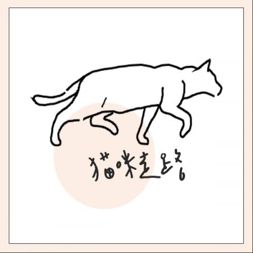 體驗Talker | 貓咪走路